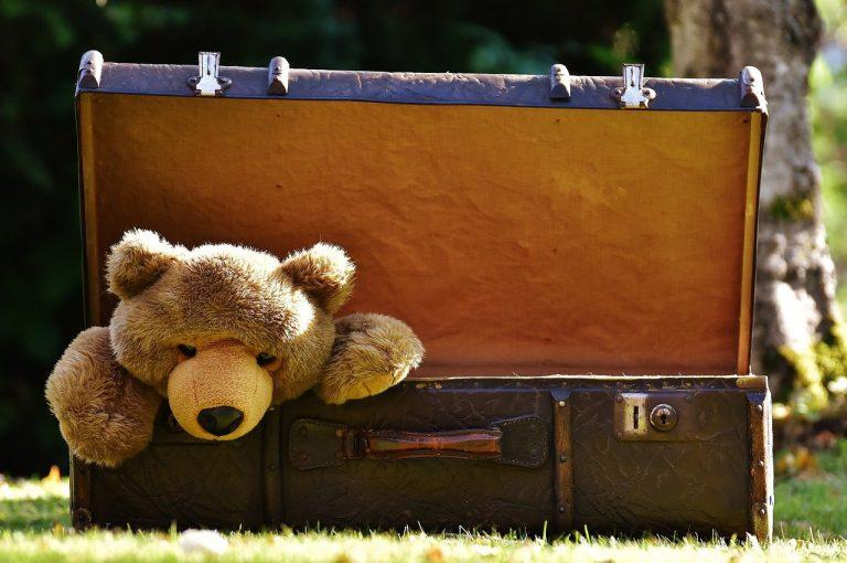 luggage, antique, teddy